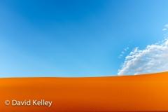 DKelley - Web2013-22